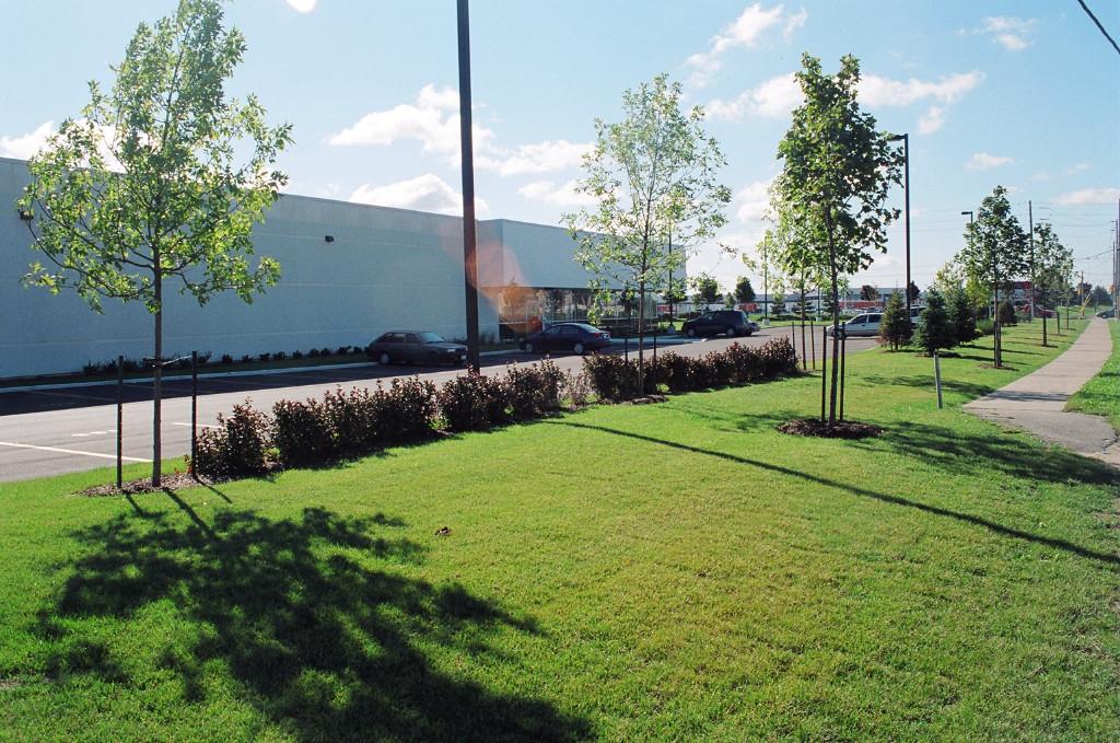 North Brampton Postal Sorting Facility Landscape